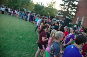 Party on the lawn