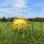 A sunshine balloon smiling in the grass