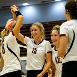 Volleyball players high fiving each other
