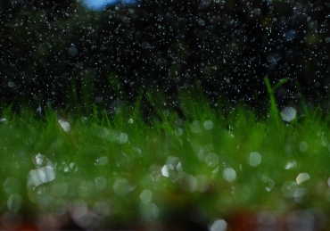 Killer Sprinklers: SNU's irrigation system